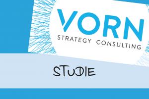 beitragsbild_350px_studie-vorn-consulting